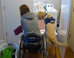 caccia ai falsi invalidi