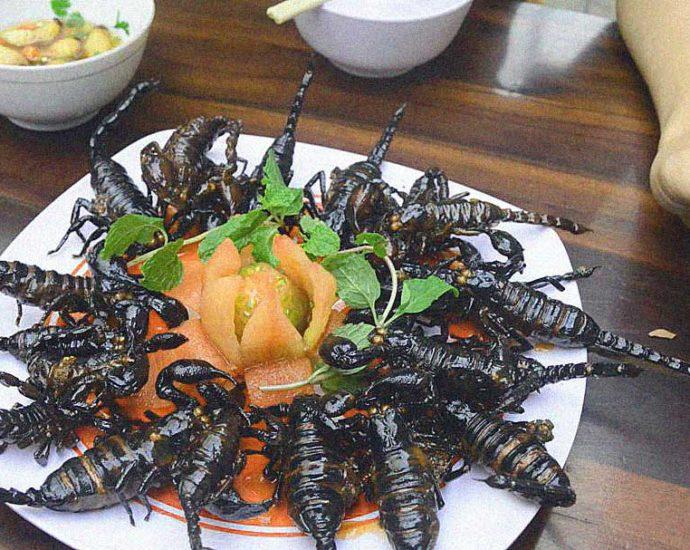 piatto disgustoso di insetti vietnamita